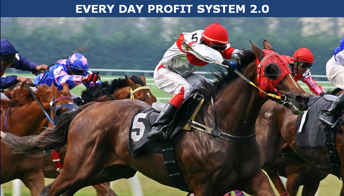 Everyday_Profits_System