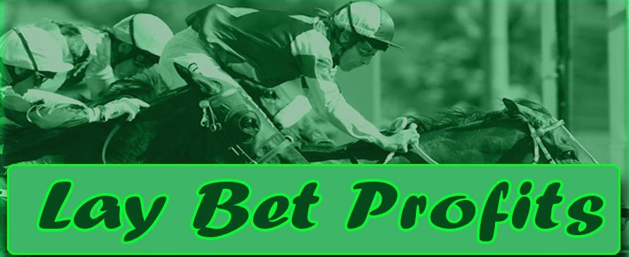 Lay Bet Profits Lay Bet Profits Day 13