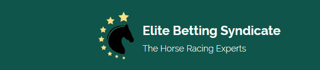 Elite Betting Syndicate Introduction