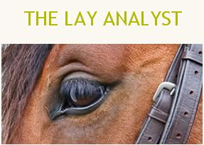 The Lay Analyst Final Review